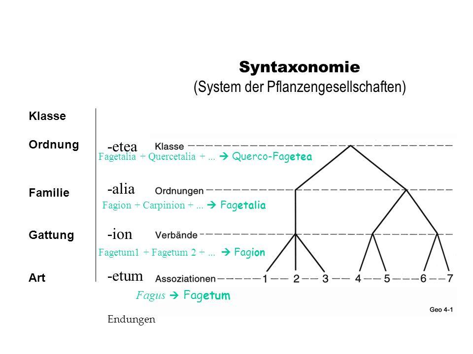(System der Pflanzengesellschaften)