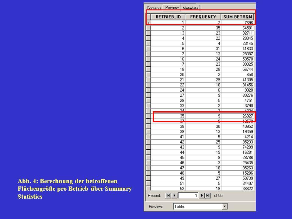 Abb. 4: Berechnung der betroffenen Flächengröße pro Betrieb über Summary Statistics