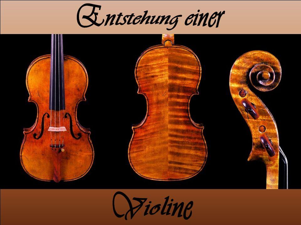 Entstehung einer Violine