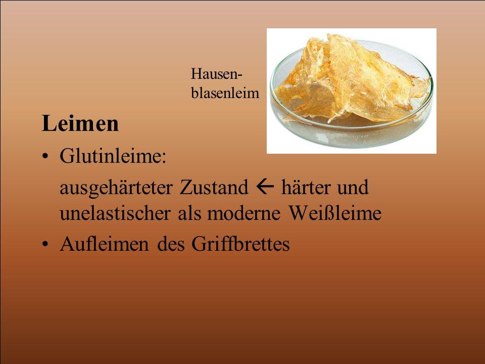 Hausen-blasenleim Leimen. Glutinleime: ausgehärteter Zustand  härter und unelastischer als moderne Weißleime.