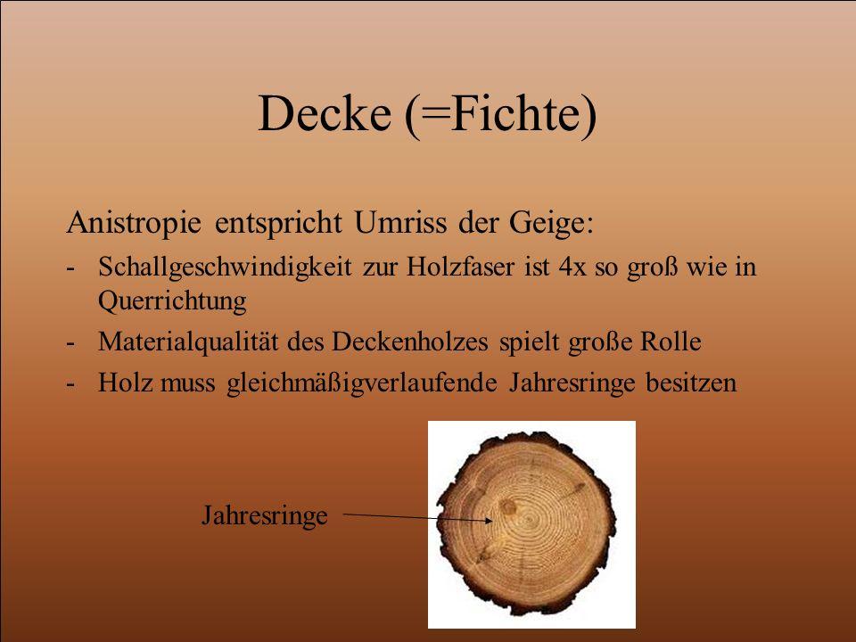 Decke (=Fichte) Anistropie entspricht Umriss der Geige: