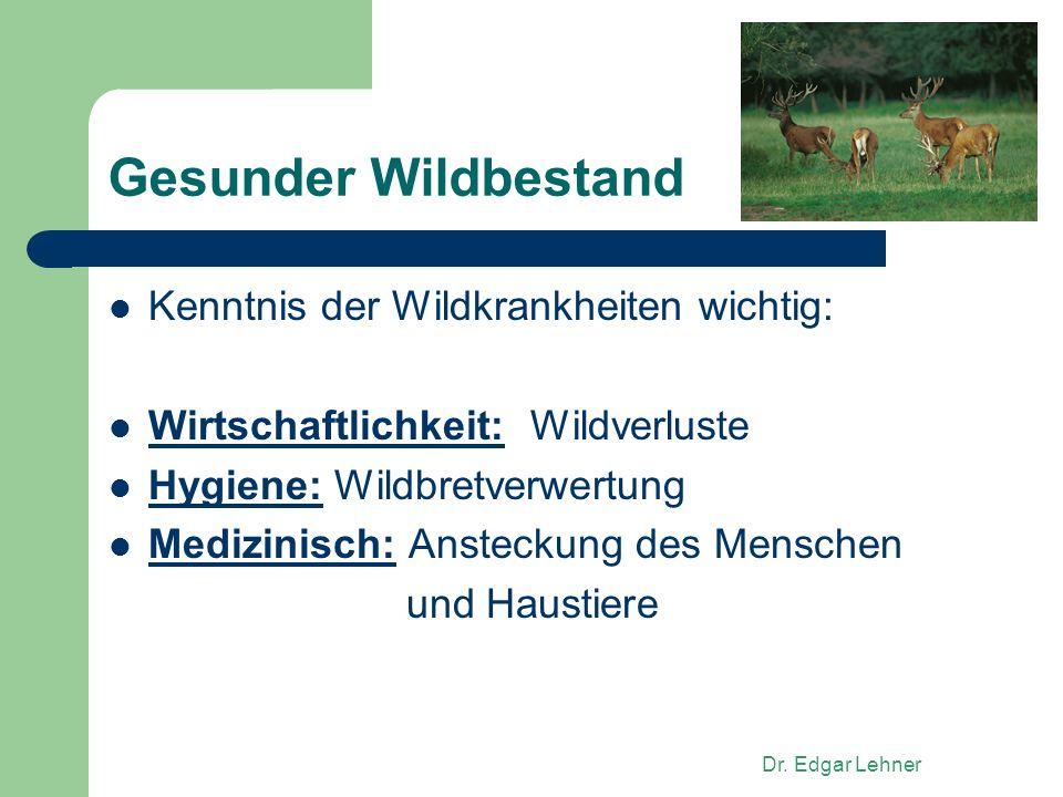 Gesunder Wildbestand Kenntnis der Wildkrankheiten wichtig:
