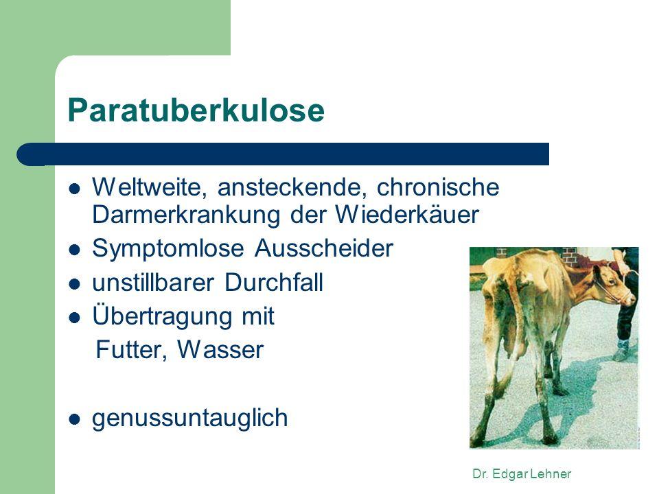 Paratuberkulose Weltweite, ansteckende, chronische Darmerkrankung der Wiederkäuer. Symptomlose Ausscheider.