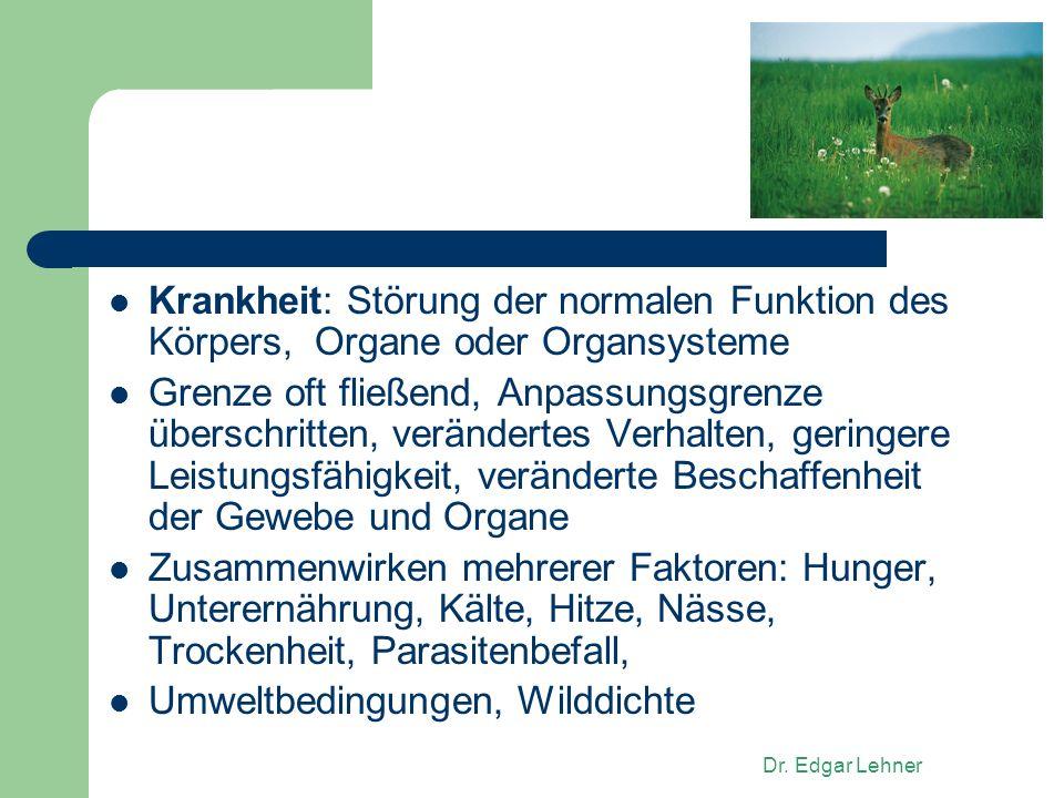 Atemberaubend Organsysteme Des Körpers Galerie - Menschliche ...