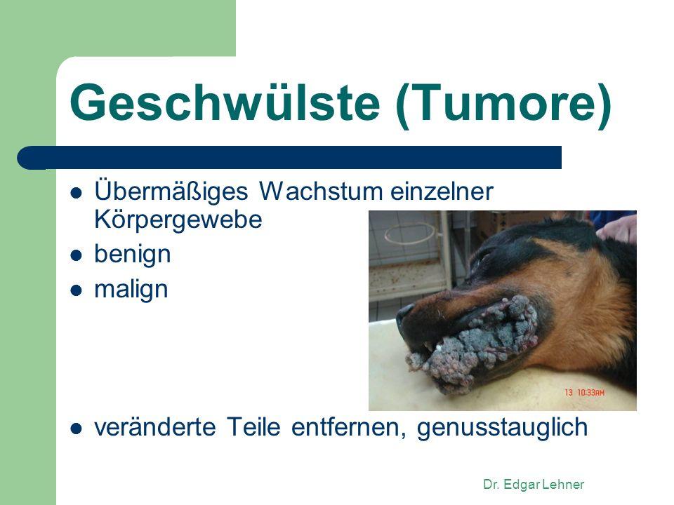 Geschwülste (Tumore) Übermäßiges Wachstum einzelner Körpergewebe