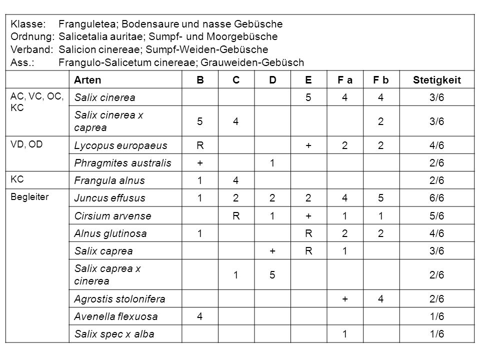 Klasse: Franguletea; Bodensaure und nasse Gebüsche