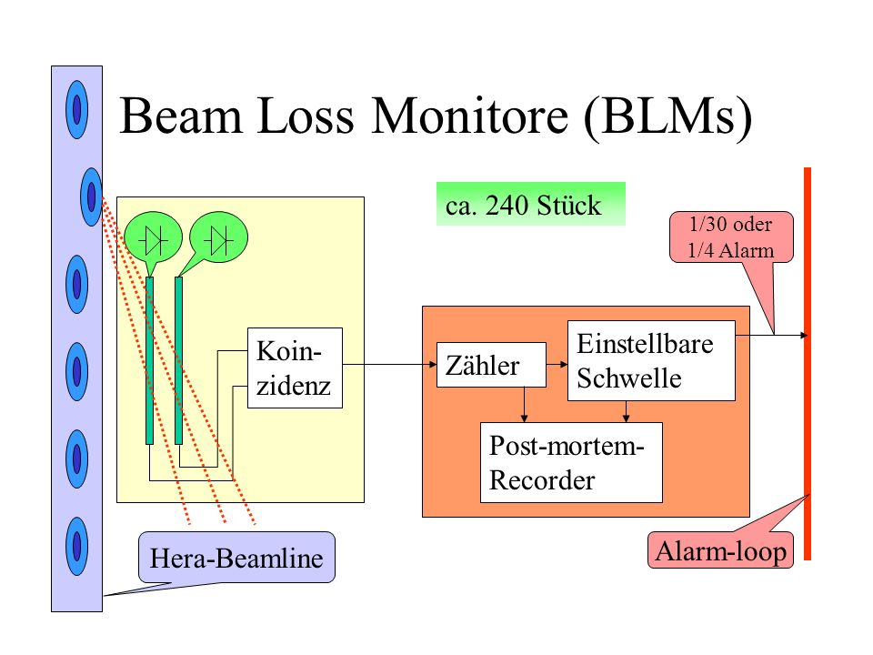 Beam Loss Monitore (BLMs)