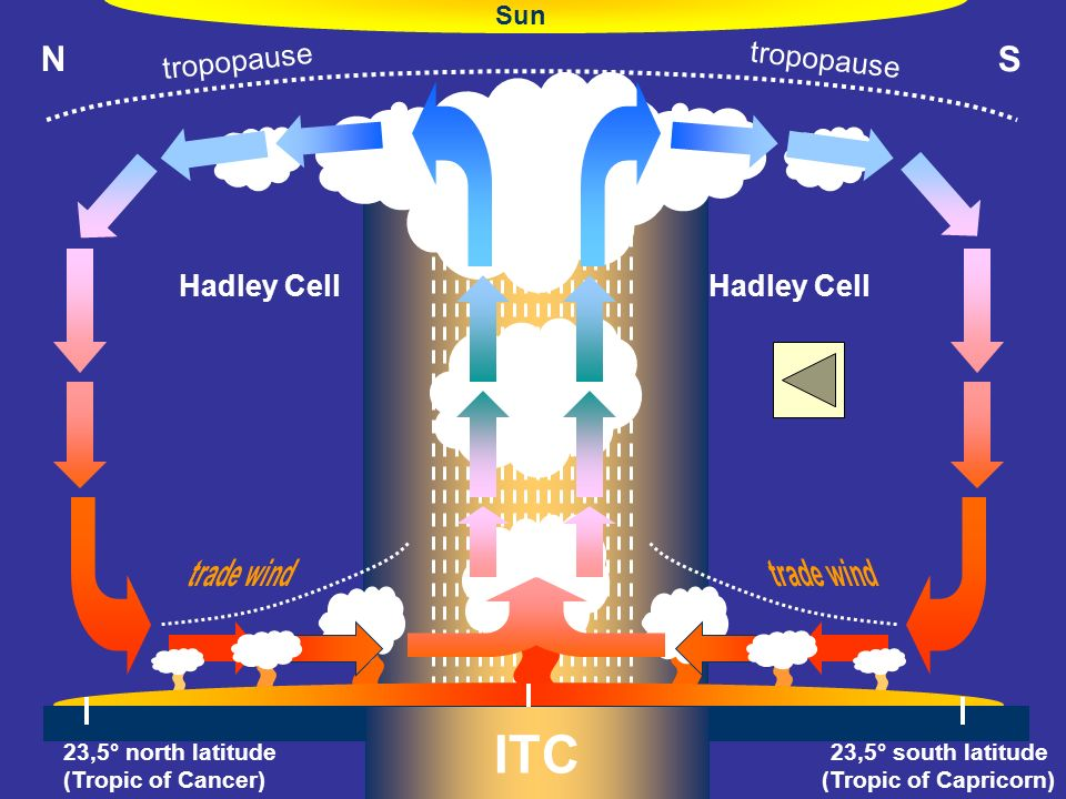 ITC N S trade wind tropopause Hadley Cell Sun O° (Equator)