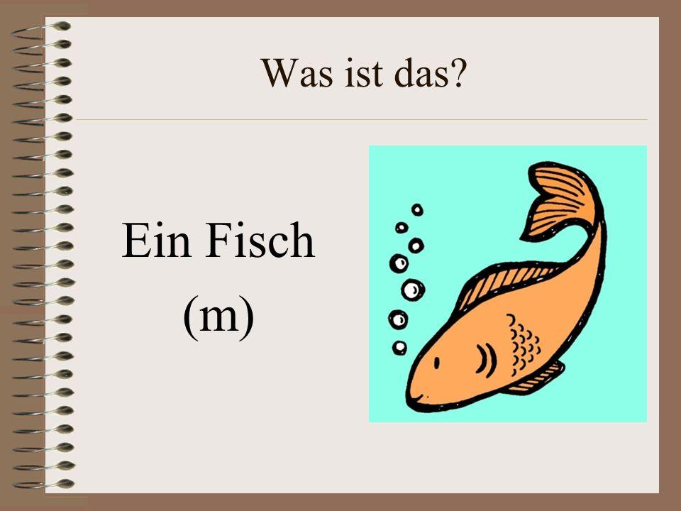 Was ist das Ein Fisch (m)