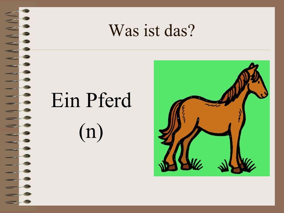 Was ist das Ein Pferd (n)