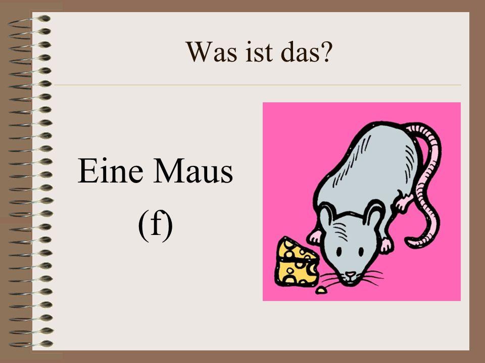 Was ist das Eine Maus (f)