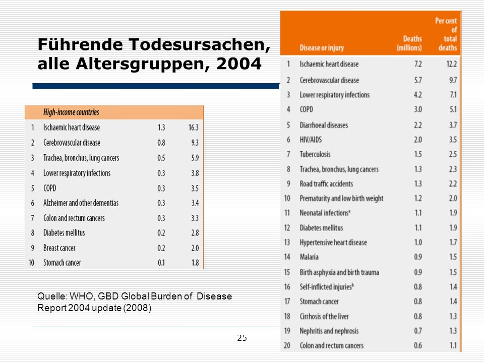 Führende Todesursachen, alle Altersgruppen, 2004