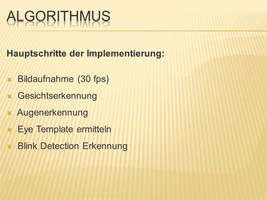 Algorithmus Hauptschritte der Implementierung: Bildaufnahme (30 fps)