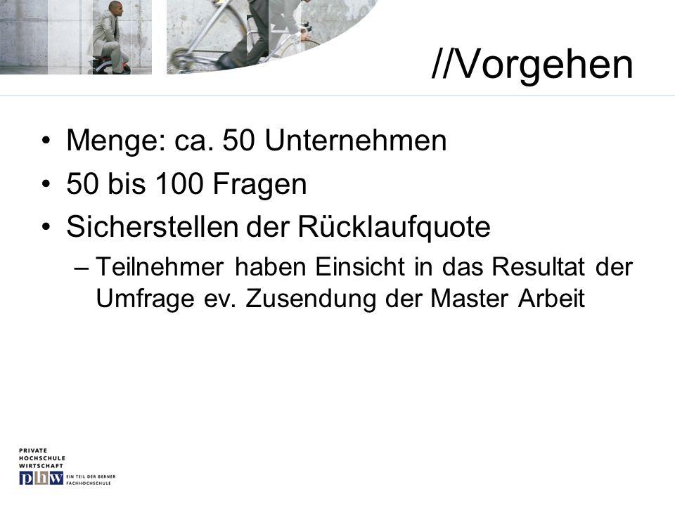 //Vorgehen Menge: ca. 50 Unternehmen 50 bis 100 Fragen
