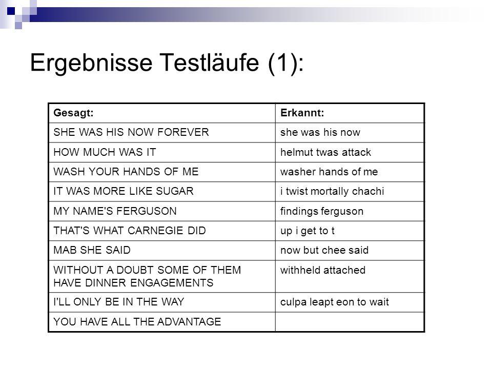 Ergebnisse Testläufe (1):