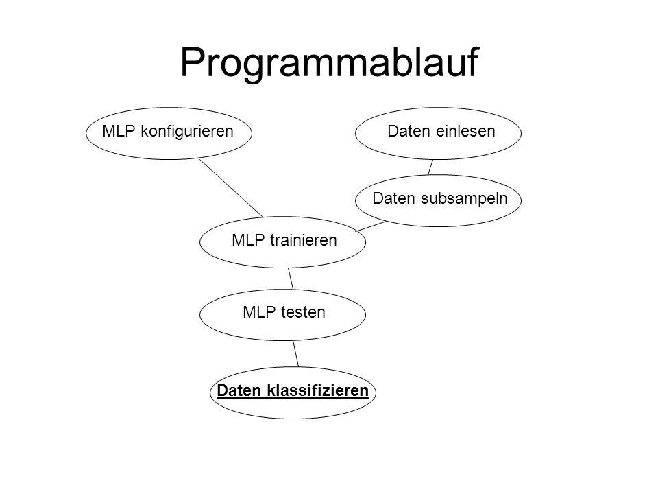 Programmablauf MLP konfigurieren Daten einlesen Daten subsampeln