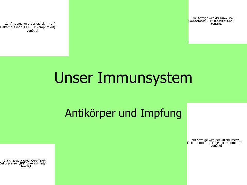 Antikörper und Impfung