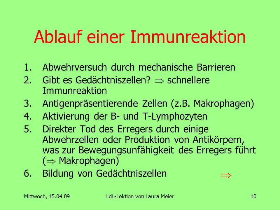 Ablauf einer Immunreaktion