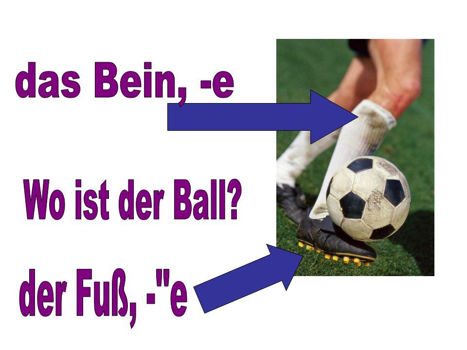 das Bein, -e Wo ist der Ball der Fuß, - e