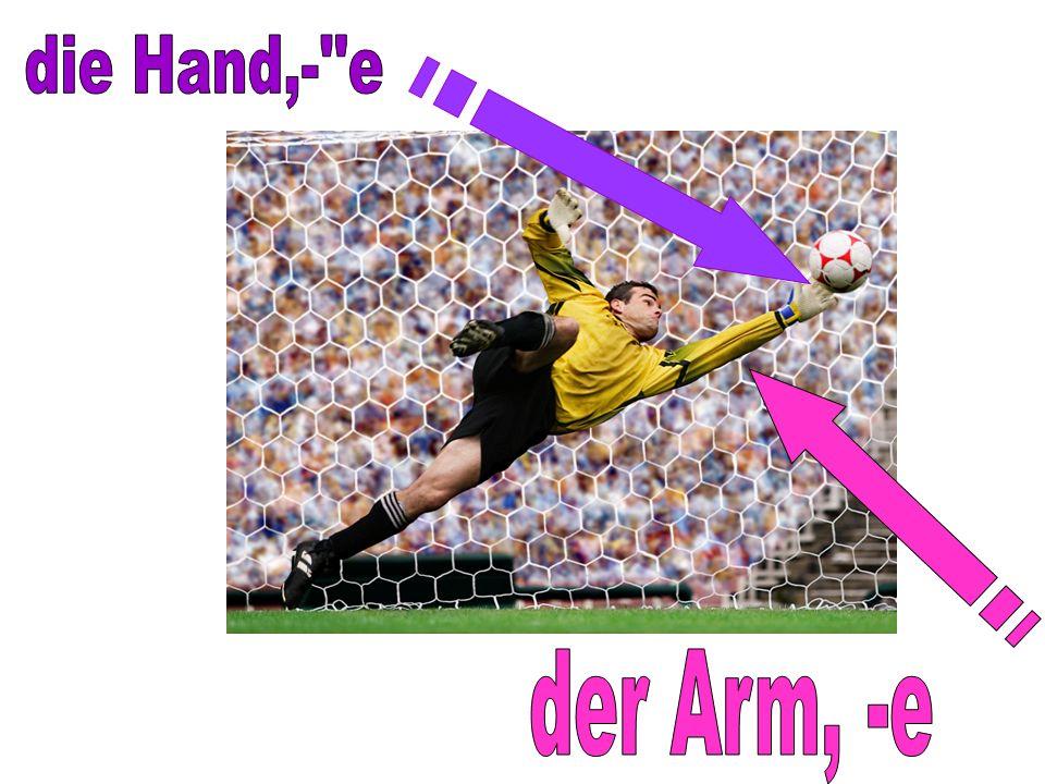 die Hand,- e der Arm, -e