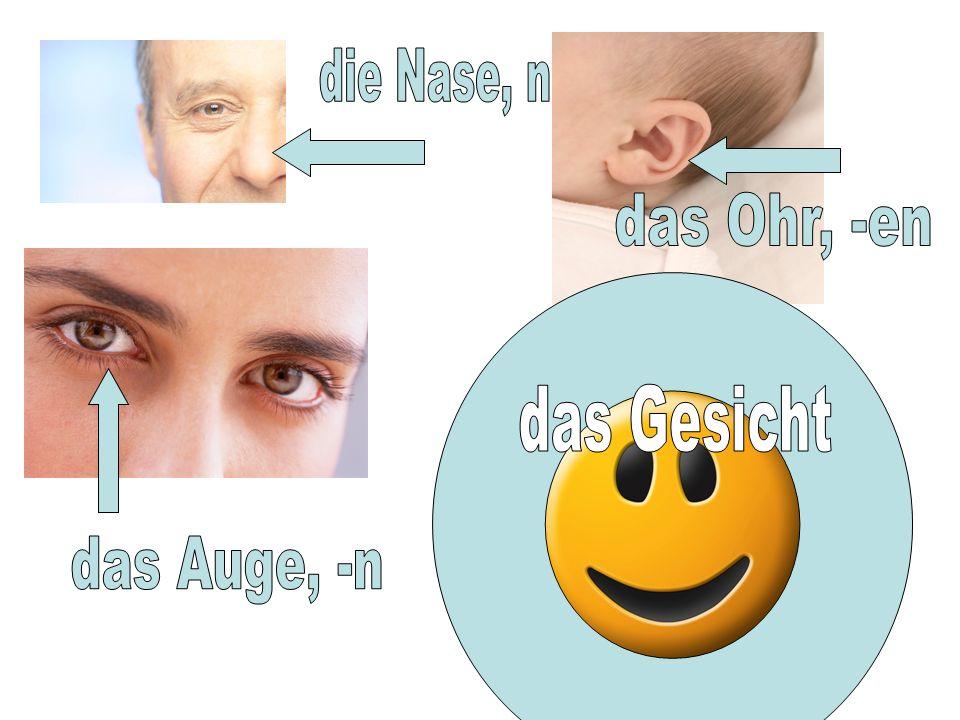 die Nase, n das Ohr, -en das Gesicht das Auge, -n