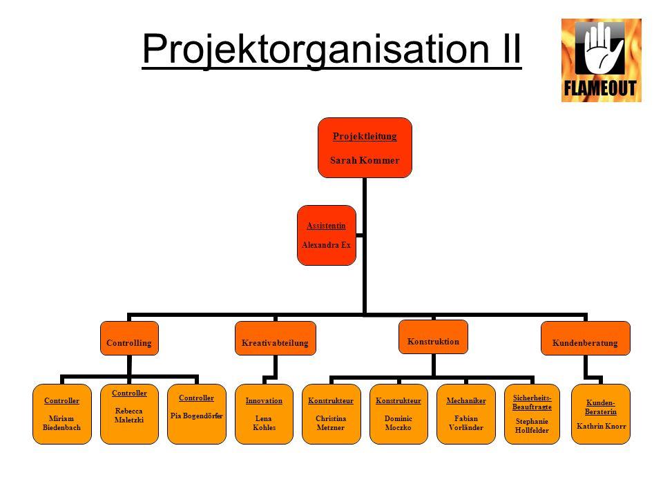 Projektorganisation II