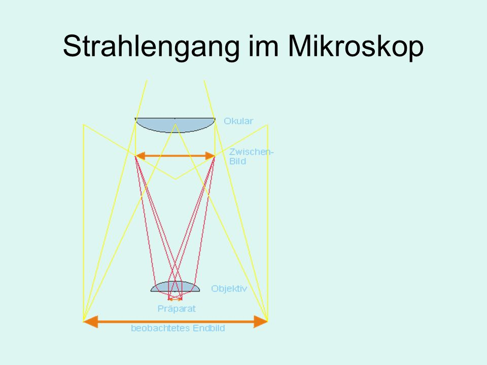 Strahlengang im Mikroskop