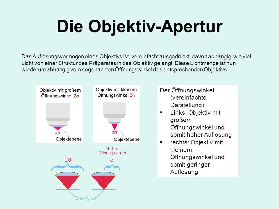Die Objektiv-Apertur Der Öffnungswinkel (vereinfachte Darstellung)