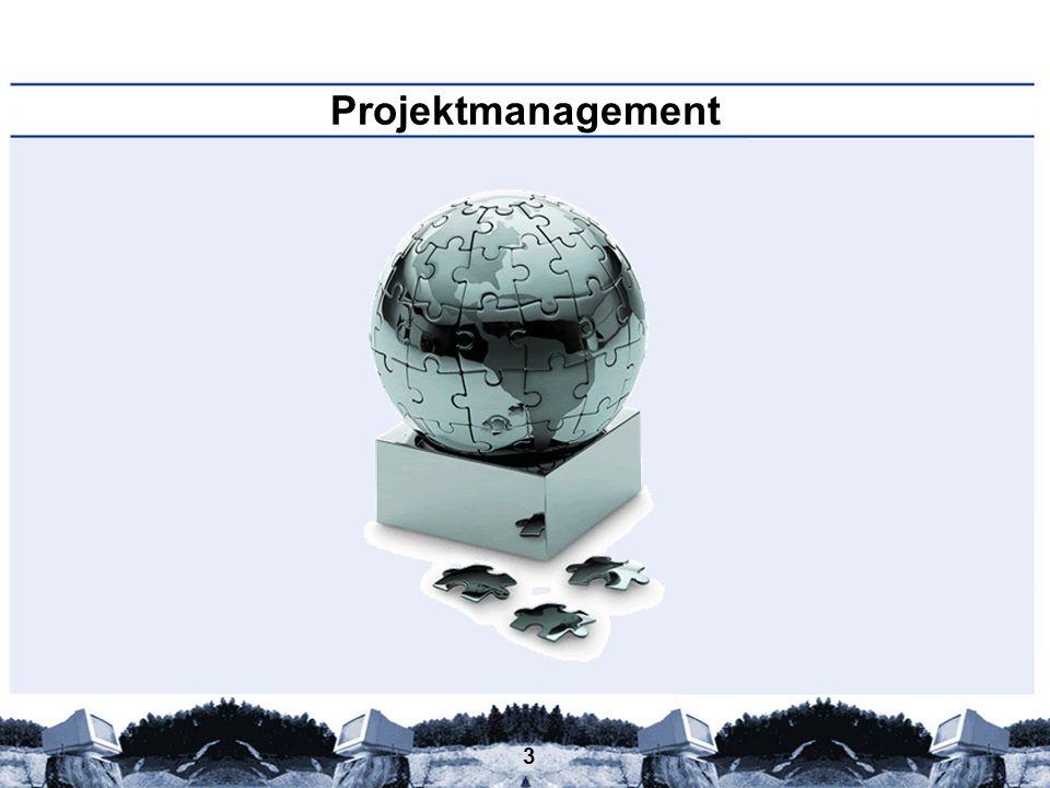 Projektmanagement Persönliche Beispiele: Wer führt welche Projekte durch (hat/will/wird)