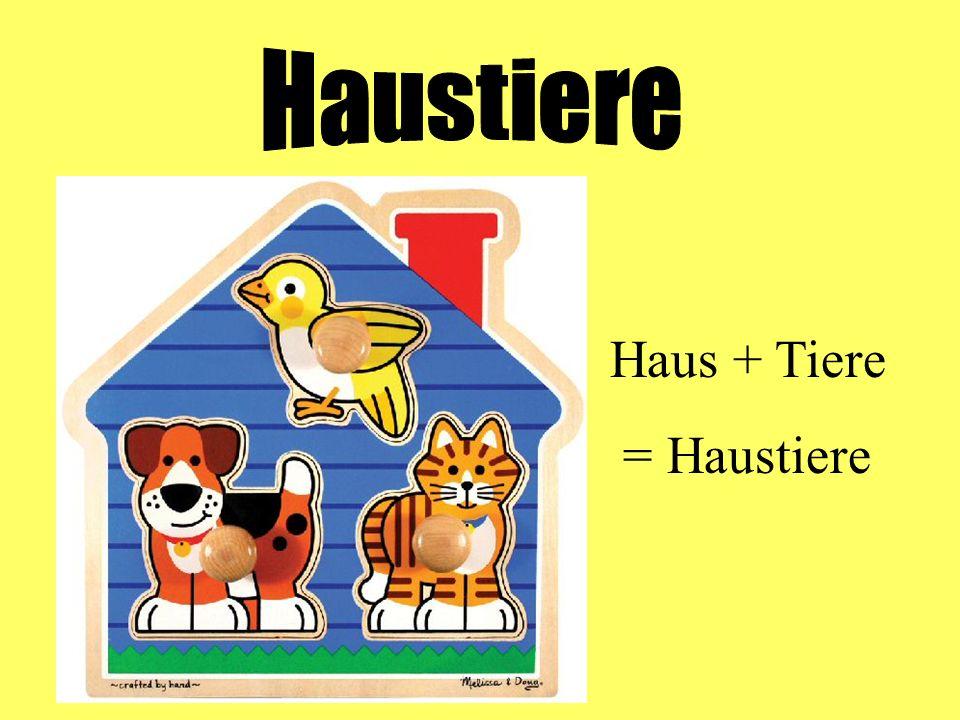 Haustiere Haus + Tiere = Haustiere