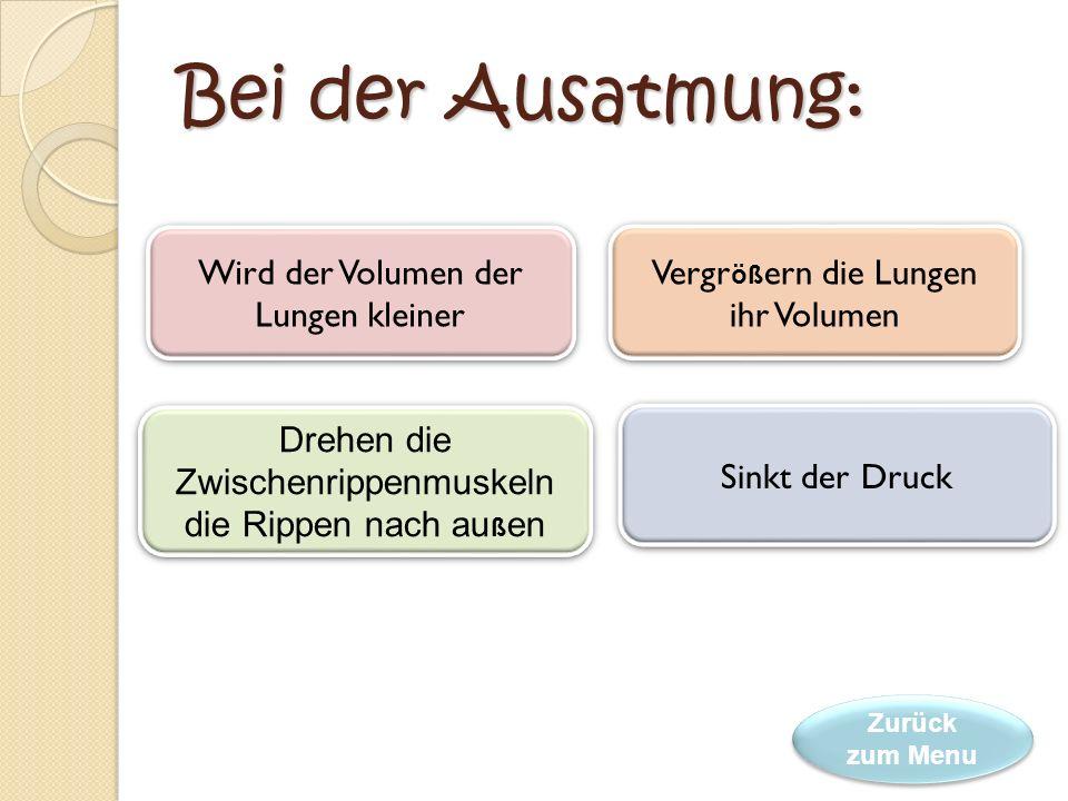 Bei der Ausatmung: Wird der Volumen der Lungen kleiner