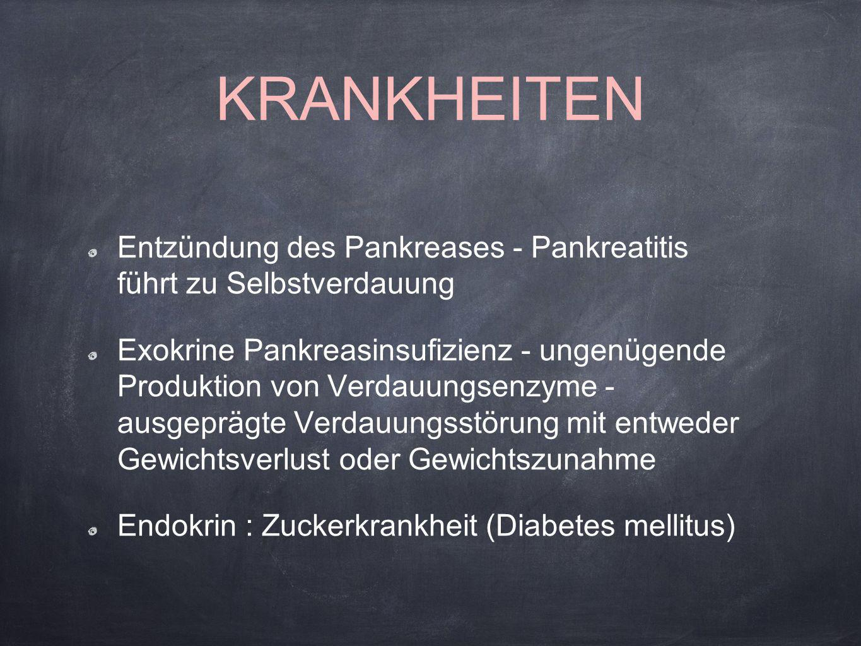 KRANKHEITEN Entzündung des Pankreases - Pankreatitis führt zu Selbstverdauung.