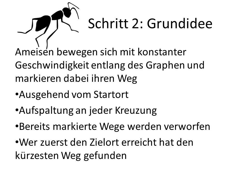 Schritt 2: Grundidee Ameisen bewegen sich mit konstanter Geschwindigkeit entlang des Graphen und markieren dabei ihren Weg.
