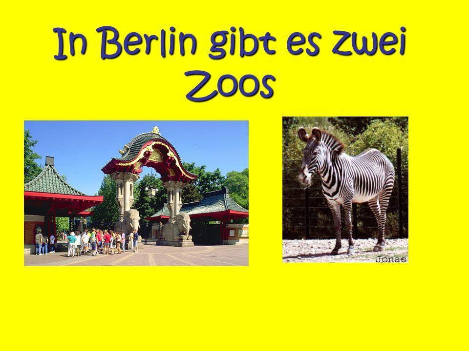 In Berlin gibt es zwei Zoos