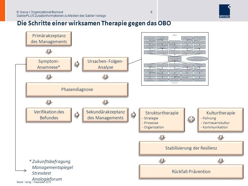 Die Schritte einer wirksamen Therapie gegen das OBO