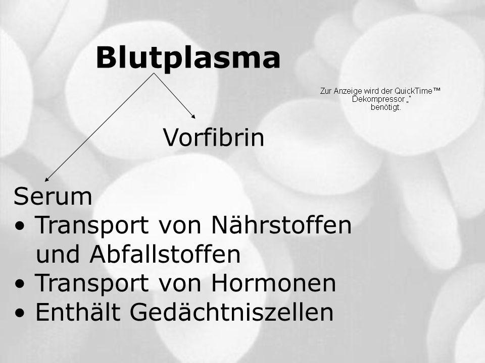 Blutplasma Vorfibrin Serum Transport von Nährstoffen und Abfallstoffen