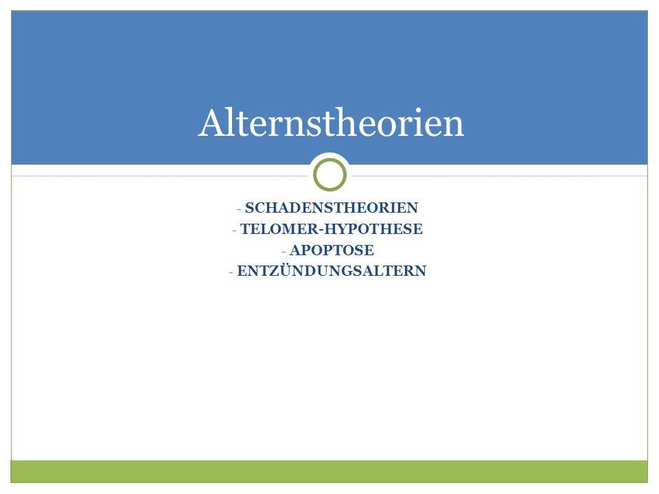 Alternstheorien SCHADENSTHEORIEN TELOMER-HYPOTHESE APOPTOSE