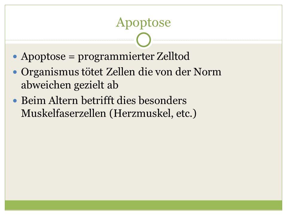 Apoptose Apoptose = programmierter Zelltod