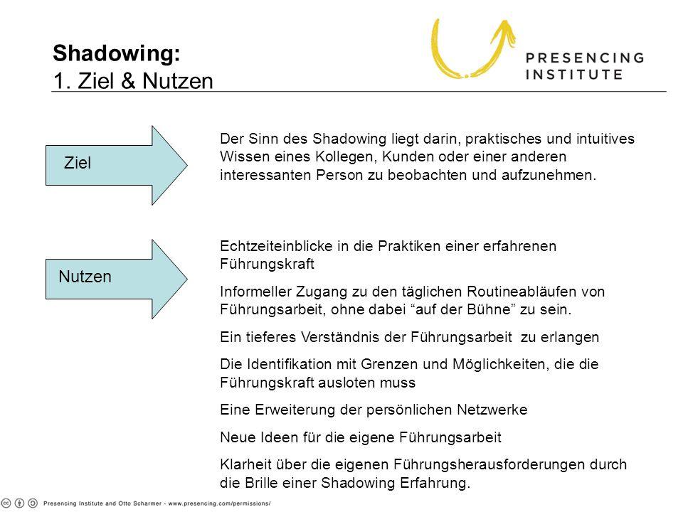 Shadowing: 1. Ziel & Nutzen