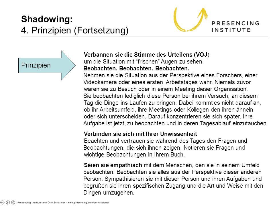 Shadowing: 4. Prinzipien (Fortsetzung)