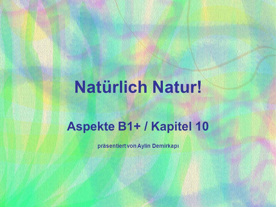 Aspekte B1+ / Kapitel 10 präsentiert von Aylin Demirkapı