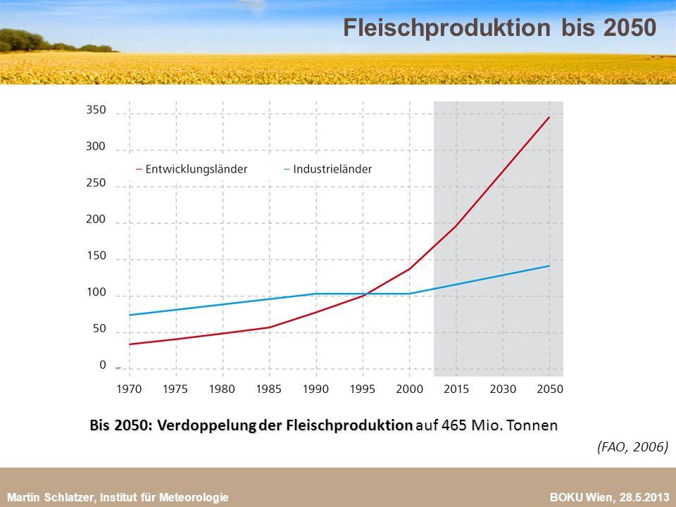 Fleischproduktion bis 2050