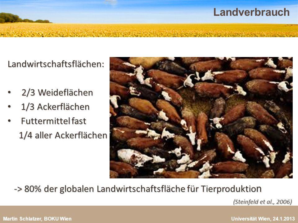 Landverbrauch Landwirtschaftsflächen: 2/3 Weideflächen