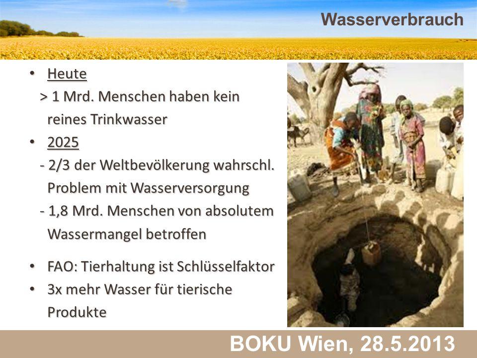 Martin Schlatzer, Institut für Meteorologie BOKU Wien, 28.5.2013