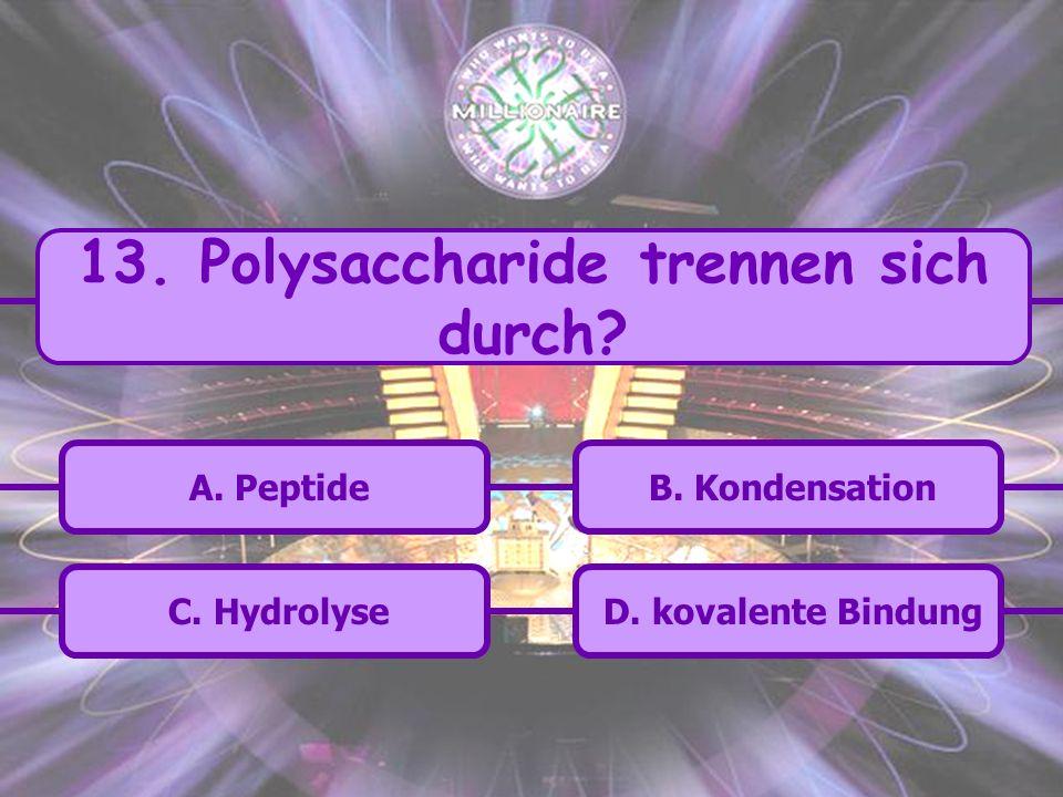 13. Polysaccharide trennen sich durch