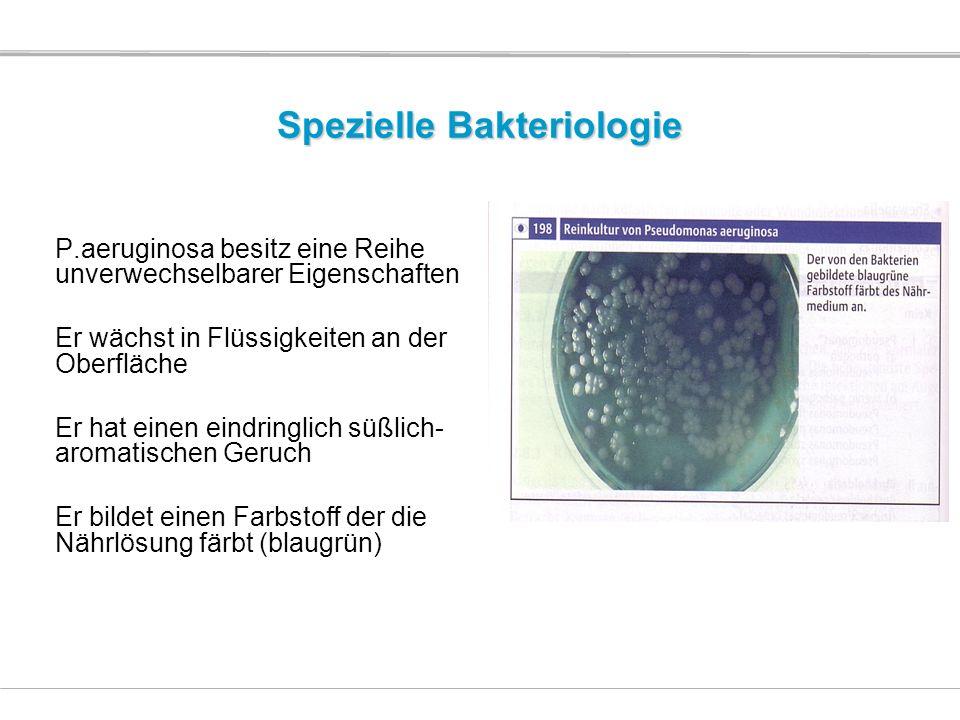Spezielle Bakteriologie