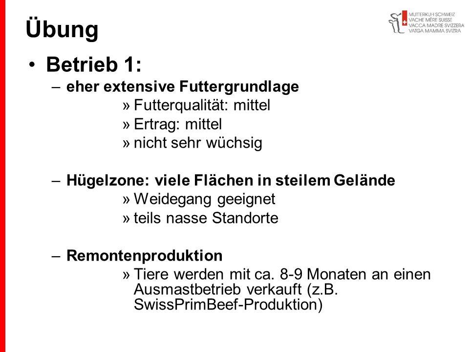 Übung Betrieb 1: eher extensive Futtergrundlage Futterqualität: mittel