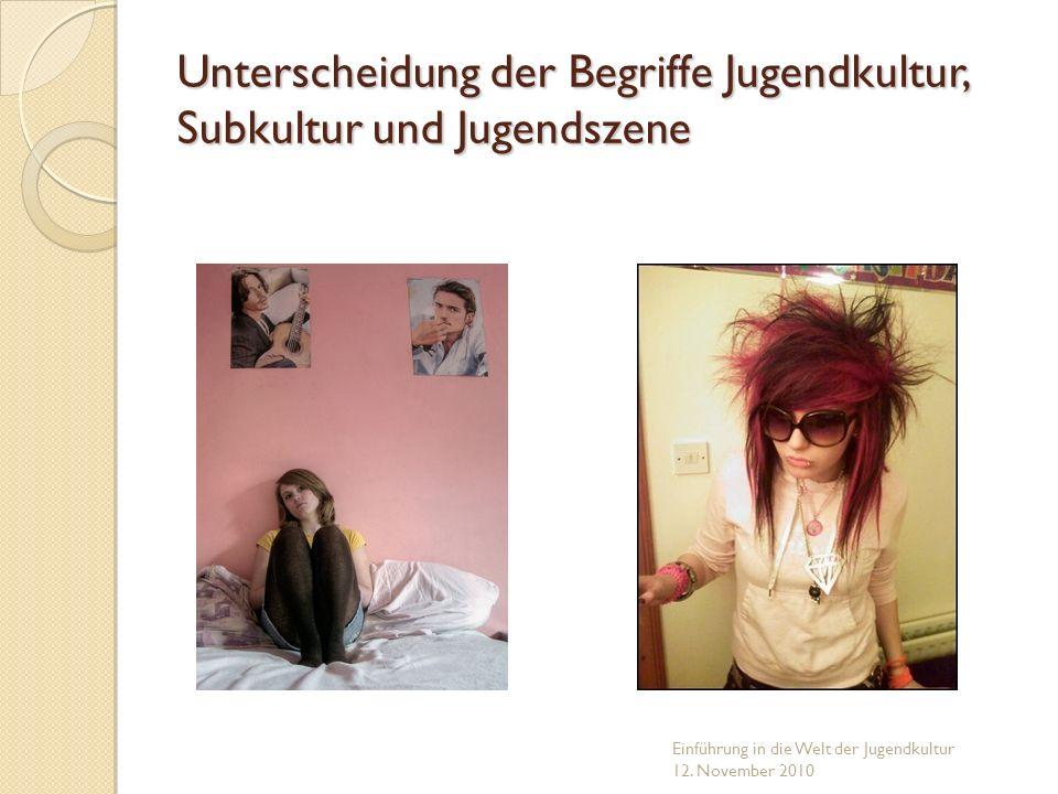 Unterscheidung der Begriffe Jugendkultur, Subkultur und Jugendszene