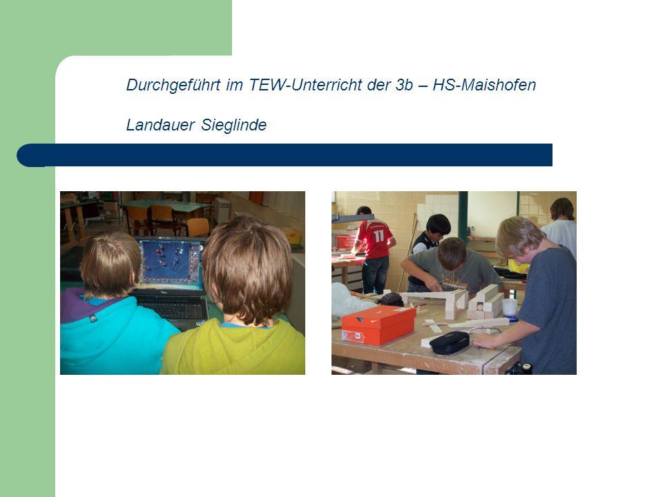 Durchgeführt im TEW-Unterricht der 3b – HS-Maishofen Landauer Sieglinde