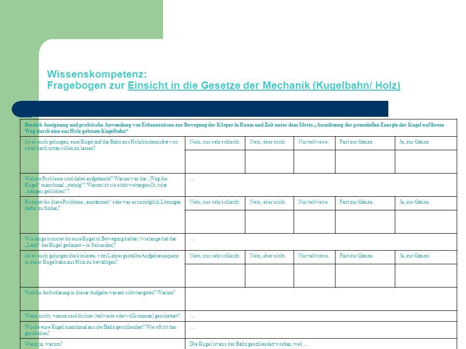 Wissenskompetenz: Fragebogen zur Einsicht in die Gesetze der Mechanik (Kugelbahn/ Holz)